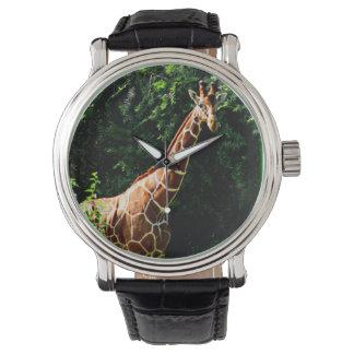 Samburuのキリン 腕時計