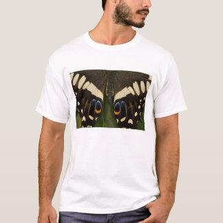 Sammamishのワシントン州の熱帯蝶12 Tシャツ