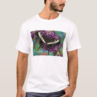 Sammamishのワシントン州の熱帯蝶13 Tシャツ