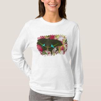 Sammamishのワシントン州の熱帯蝶14 Tシャツ
