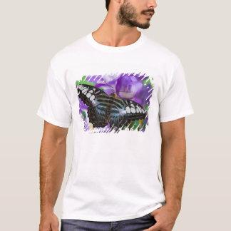 Sammamishのワシントン州の熱帯蝶21 Tシャツ