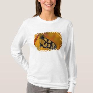 Sammamishのワシントン州の熱帯蝶33 Tシャツ