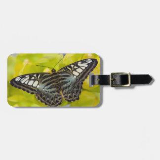 Sammamishのワシントン州の熱帯蝶38 ラゲッジタグ