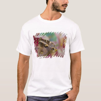 Sammamishのワシントン州の熱帯蝶3 Tシャツ