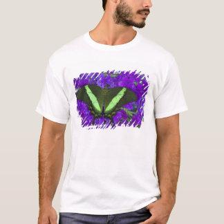 Sammamishのワシントン州の熱帯蝶4 Tシャツ