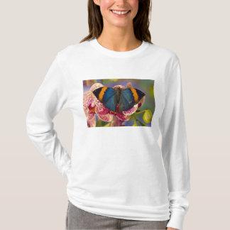 Sammamishワシントン州の熱帯蝶11 Tシャツ