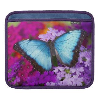 Sammamishワシントン州の熱帯蝶7 iPadスリーブ