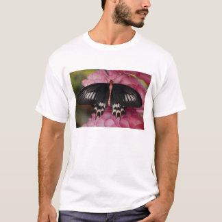 Sammamish、ワシントン州。 熱帯蝶10 tシャツ