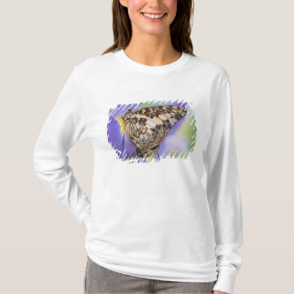 Sammamish、ワシントン州。 熱帯蝶22 tシャツ