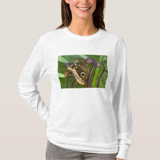 Sammamish、ワシントン州。 熱帯蝶31 tシャツ