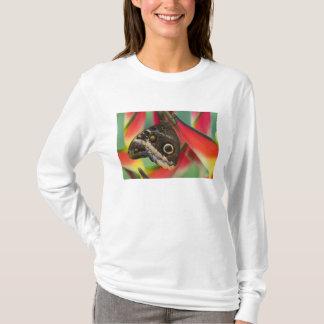 Sammamish、ワシントン州。 熱帯蝶32 tシャツ