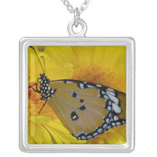 Sammamish、ワシントン州。 熱帯蝶38 シルバープレートネックレス