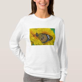 Sammamish、ワシントン州。 熱帯蝶38 tシャツ