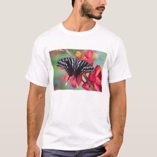 Sammamish、ワシントン州。 熱帯蝶48 tシャツ