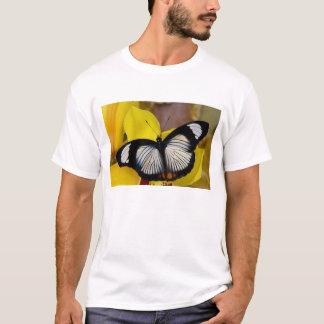 Sammamish、ワシントン州。 熱帯蝶62 tシャツ