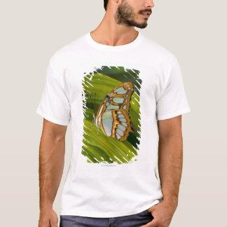 Sammamish、ワシントン州、米国 Tシャツ