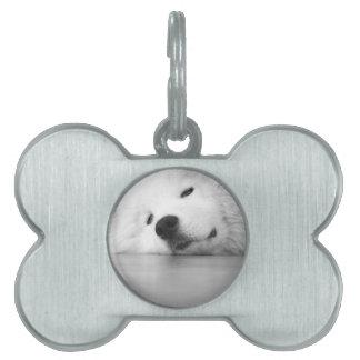 Samoyedの写真犬の白 ペットネームタグ