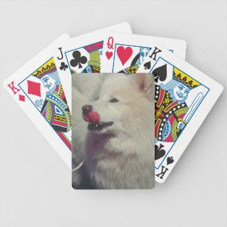 Samoyed犬のトランプを舐めること バイスクルトランプ