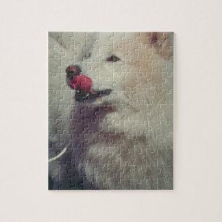 Samoyed犬のパズルを舐めること パズル
