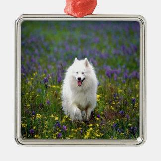 Samoyed犬 メタルオーナメント
