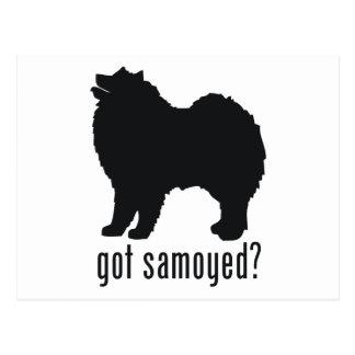 Samoyed ポストカード