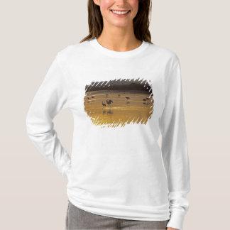 SandhillはGrusのcanadensis) Bosque Delを伸ばします Tシャツ