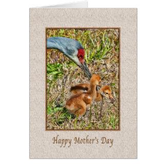 Sandhillクレーン鳥との母の日 カード