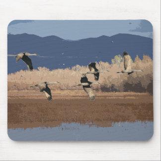 Sandhillクレーン鳥の野性生物動物 マウスパッド