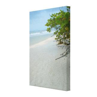 Sanibelの島の平和そして静寂 キャンバスプリント