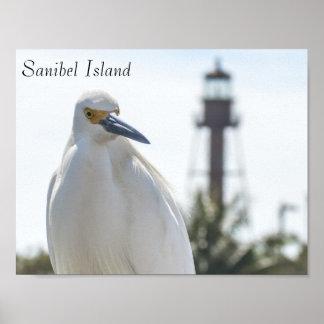 Sanibelの島の灯台および鳥ポスター ポスター