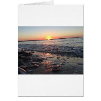 Sanibelの島 カード