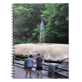 Saratogaのスパの州の公園間欠泉の入り江 ノートブック