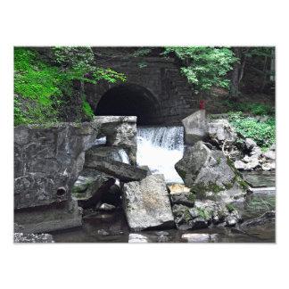 Saratogaのスパの州の公園間欠泉の入り江 フォトプリント