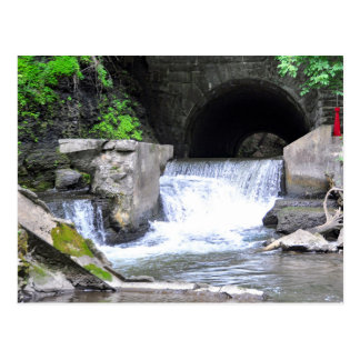 Saratogaのスパの州の公園間欠泉の入り江 ポストカード