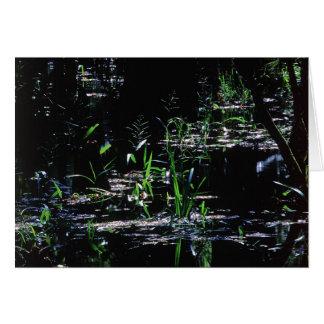 Scenics -写真- Sebringのハンモック カード