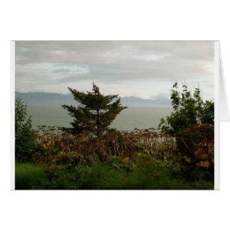 Scenics Kachemak湾 カード
