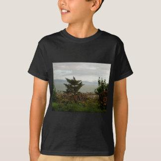 Scenics Kachemak湾 Tシャツ