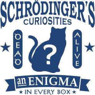 Schrodingerの猫の死んだか生きた量子力学 キーホルダー