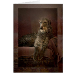 Scottish deerhound on a sofa カード