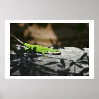 scrapwoodのトカゲ ポスター