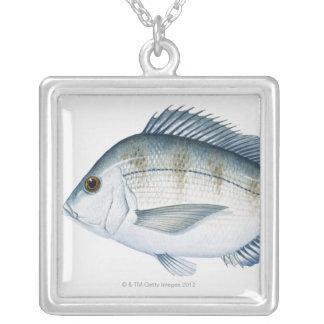 Scupの魚 シルバープレートネックレス