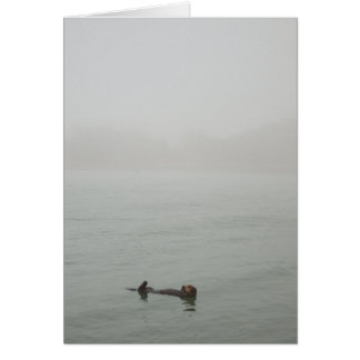 Sea Otter floating in a fog カード