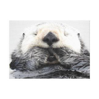 Sea Otter Sleeping キャンバスプリント