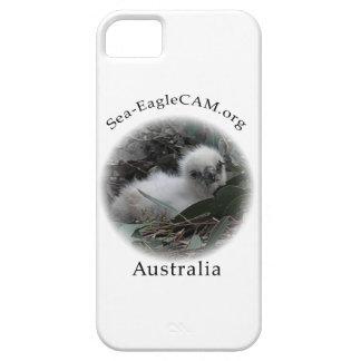 SeaEagleのHatchling Iの電話箱 iPhone SE/5/5s ケース