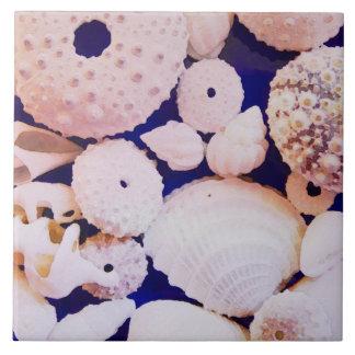 Seashells タイル