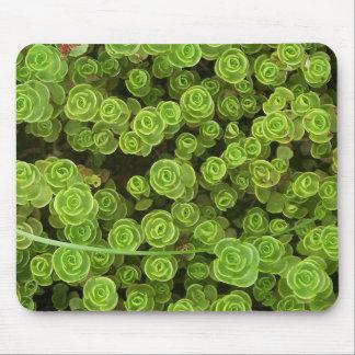 Sedumの緑のマウスパッド2 マウスパッド