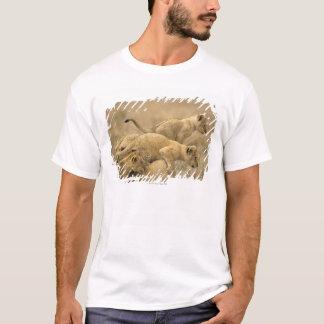 Serengetiの国立公園、タンザニア2 Tシャツ