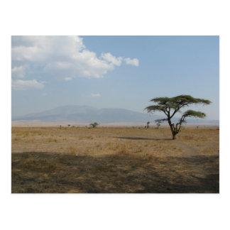 Serengetiの平野 ポストカード