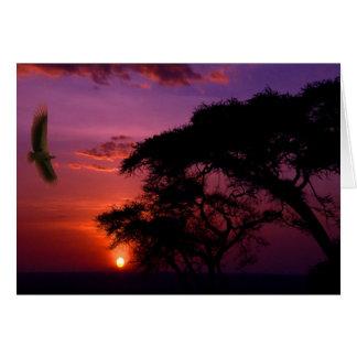 Serengeti、アフリカの日没 カード