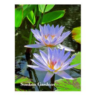 SGの組の青海原ユリ#101 00101 ポストカード